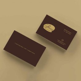 Parriez business card design
